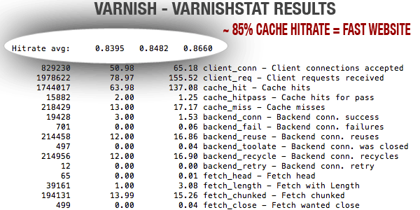 Varnish Reverse Proxy Cache hit rate